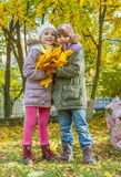 Lovely girls with yellow maple leaves Stock Photography