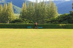 Lovely green garden Stock Photo