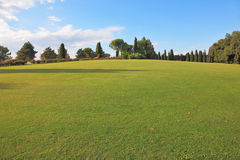 A lovely green lawn grass in a park Royalty Free Stock Photography