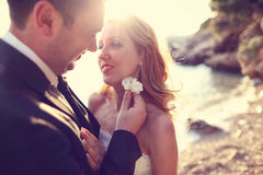 Lovely Groom and bride outdoors on a sunny day Stock Image