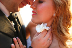 Lovely Groom and bride outdoors on a sunny day Royalty Free Stock Photo