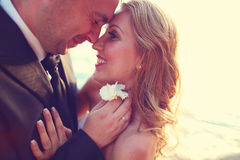 Lovely Groom and bride outdoors on a sunny day Stock Photos