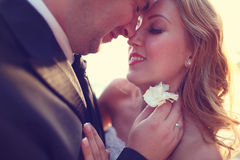 Lovely Groom and bride outdoors on a sunny day Royalty Free Stock Images