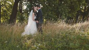 Lovely groom comes to bride and kisses her in sunny forest stock video footage