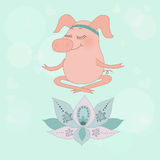 The lovely happy pig blindly sits in a lotus pose Stock Images