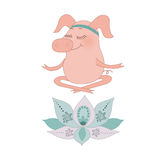 The lovely happy pig blindly sits in a lotus pose. Meditation. Fine flower of a lotus. Cute cartoon pigglet on white background Royalty Free Stock Images
