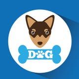 Lovely head chihuahua puppy dog. Vector illustration eps 10 Royalty Free Stock Photo