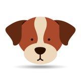 Lovely head puppy st benard dog Stock Images