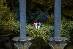Lovely hearts on a pine tree royalty free stock photography