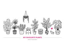 Lovely houseplants with a bird in a freehand style. stock illustration