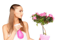 Lovely housewife with flowers Stock Photo