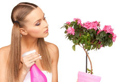 Lovely housewife with flowers Stock Photography