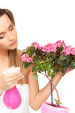 Lovely housewife with flowers Royalty Free Stock Image