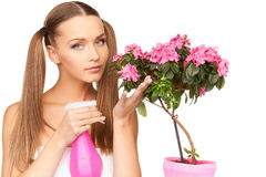 Lovely housewife with flowers Royalty Free Stock Photo