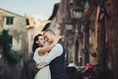 Lovely hugging wedding couple stands before the gates to an old Stock Photos