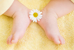 Lovely infant foot Stock Photos