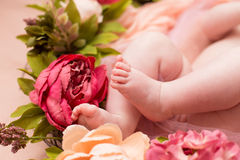 Lovely infant foot with flowers Stock Image