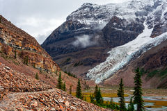 Lovely landscape. Canadian lovely landscape of the region of British Columbia Royalty Free Stock Image