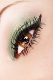 Lovely lashes Royalty Free Stock Images