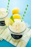Lovely lemon cold drink Royalty Free Stock Photo