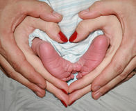 Lovely little babies feet. Newborn babies feet held by mum and dad in heart shape showing family love Stock Photos