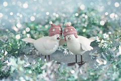 Lovely little birds. Royalty Free Stock Photo