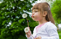 Lovely little blond little girl blowing a dandelion Stock Images