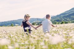 Lovely little children in the field of daisies. stock images
