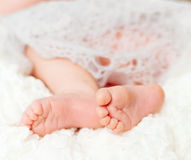 Lovely little feet Stock Images