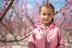 Lovely little girl in a grove of fruit trees. Spain. Lovely little girl in a grove of fruit trees in Cieza in the Murcia region. Peach, plum and nectarine trees stock image