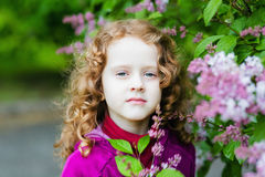 Lovely little girl near the lilac bush in spring park. Royalty Free Stock Image