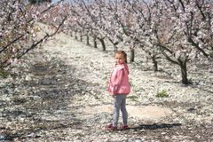 Lovely little girl standing in a grove of fruit trees. Spain. Lovely little girl standing in a grove of fruit trees in Cieza in the Murcia region. Peach, plum stock photo