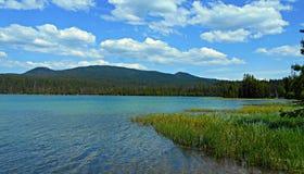 Lovely Little Lava. Little Lava Lake - Cascade Range - central OR Royalty Free Stock Photo