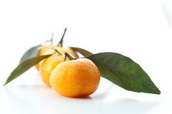 Lovely Little Mandarin Oranges. In white background Royalty Free Stock Photos