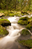 Lovely and magical water stream Stock Photography