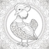 Lovely mandarin duck coloring page Stock Image