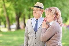 Lovely mature couple standing in park Royalty Free Stock Images