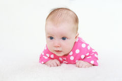Lovely 2 months baby girl on belly Stock Photos