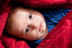 Lovely 3 months baby lying on bed covered with red blanket. Stock Images