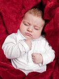 Lovely 3 months baby sleeping on bed covered with red blanket Royalty Free Stock Image