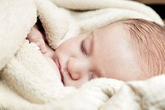 Lovely 3 months baby sleeping in soft blanket Stock Photos