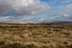 Dartmoor Vista. Lovely moorland view showing at least 7 tors on the horizon Royalty Free Stock Photo
