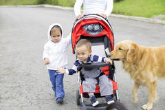 Lovely Mother with Her Children And Dog Stock Photos