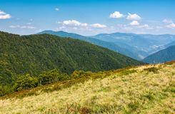 Lovely mountainous landscape in early autumn. Lovely mountainous landscape in summer. scenery with forested hills and grassy meadow under the blue sky with Stock Photography