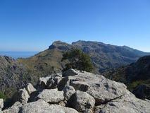 Lovely nature on the way to Sa Calobra, Mallorca Stock Image