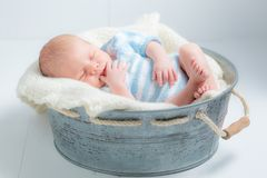 Lovely newborn baby sleeping in little bath. On white background Stock Photos