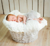 Lovely newborn baby sleeps Stock Photography
