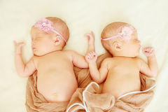 Lovely newborn twins royalty free stock images