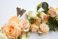 Lovely orange flowers Royalty Free Stock Photography