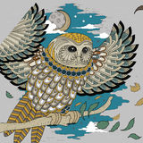 Lovely owl coloring page Royalty Free Stock Photos